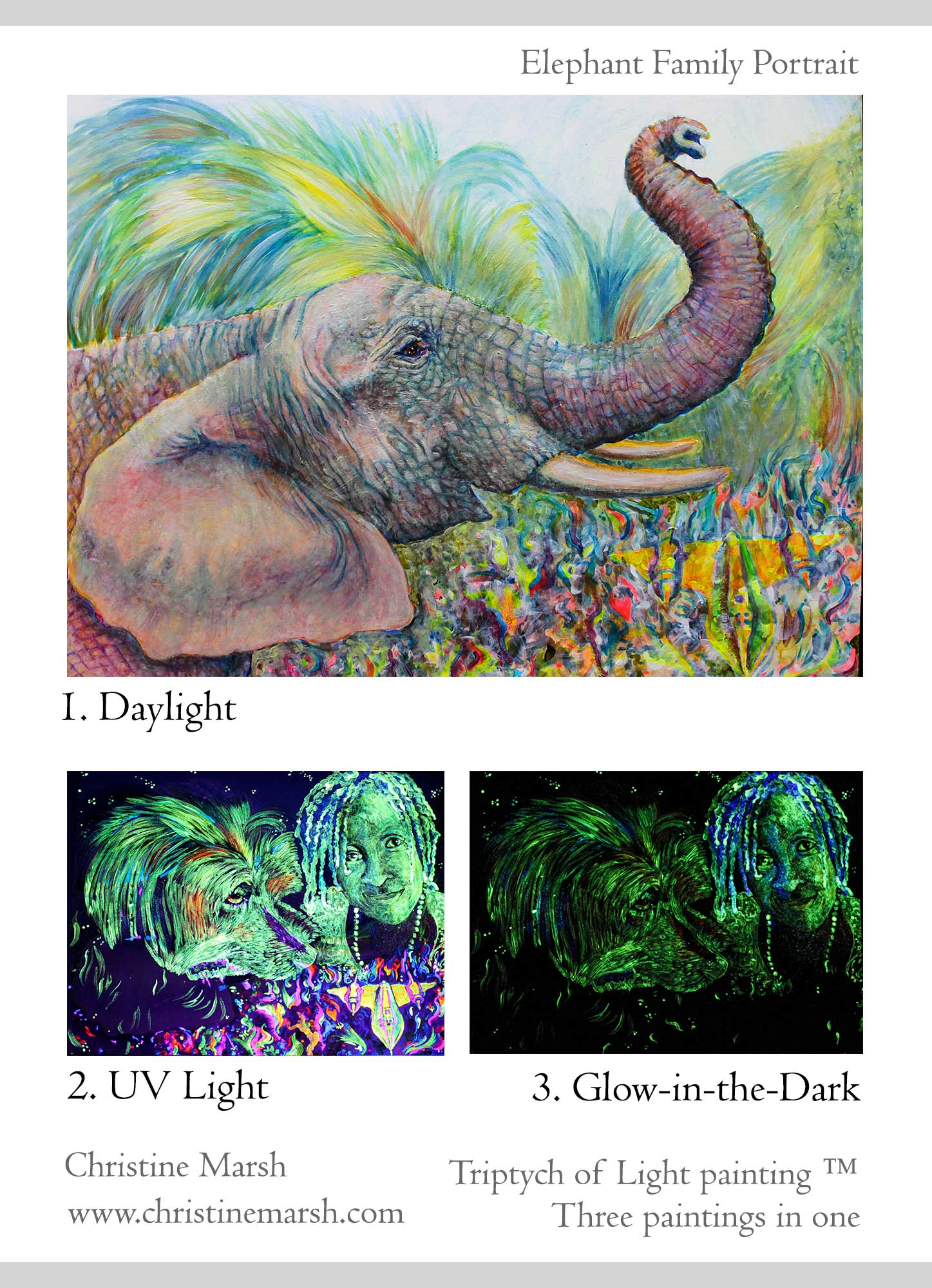 Triptych of Light - Elephant Family Portrait by Christine Marsh
