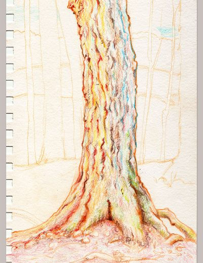 Tree-1-jpg